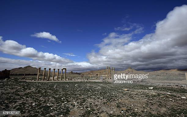 A picture taken on March 14 2014 shows a general view of the ancient oasis city of Palmyra 215 kilometres northeast of Damascus Syria's fabled desert...