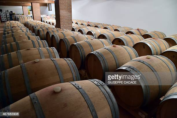 A picture taken on March 24 2015 shows barrels of wine in the Bepin de Eto cellar in San Pietro di Feletto near Conegliano If there was one tipple...