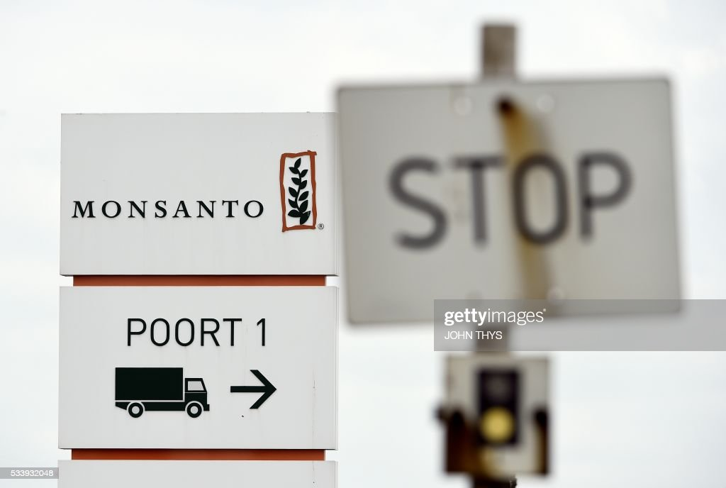 A picture taken on May 24, 2016 in Lillo near Antwerp shows a Stop sign next to the Monsanto logo at the firm Manufacturing Site and Operations Center. German chemicals and pharmaceuticals giant Bayer, a household name thanks to its painkiller Aspirin, said this week that it is offering $122 per share in cash for Monsanto, or $62 billion (55 billion euros) in all. It would be the biggest takeover by a German group of a foreign company and would create a new world leader in seeds, pesticides and genetically modified (GM) crops. THYS