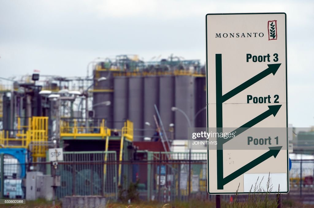 A picture taken on May 24, 2016 in Lillo near Antwerp shows an indication sign with on top the Monsanto logo at the firm Manufacturing Site and Operations Center. German chemicals and pharmaceuticals giant Bayer, a household name thanks to its painkiller Aspirin, said this week that it is offering $122 per share in cash for Monsanto, or $62 billion (55 billion euros) in all. It would be the biggest takeover by a German group of a foreign company and would create a new world leader in seeds, pesticides and genetically modified (GM) crops. THYS