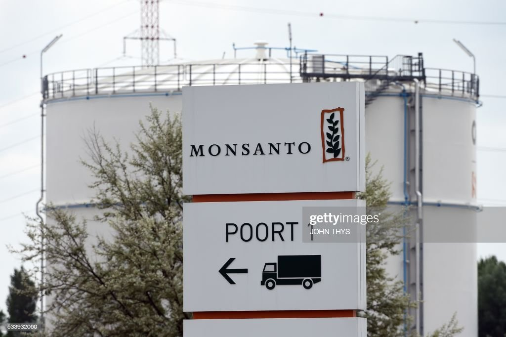 A picture taken on May 24, 2016 in Lillo near Antwerp shows the Monsanto logo at the firm Manufacturing Site and Operations Center. German chemicals and pharmaceuticals giant Bayer, a household name thanks to its painkiller Aspirin, said this week that it is offering $122 per share in cash for Monsanto, or $62 billion (55 billion euros) in all. It would be the biggest takeover by a German group of a foreign company and would create a new world leader in seeds, pesticides and genetically modified (GM) crops. THYS
