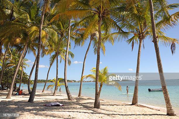 A picture taken on November 20 2011 shows the SainteAnne beach in Grande Terre in the French West Indies island of Guadeloupe AFP PHOTO JEANMICHEL...