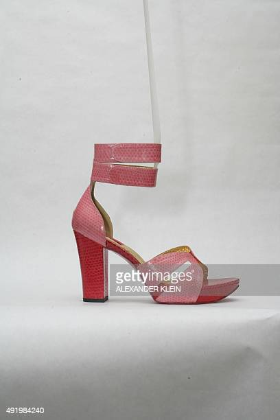 A picture taken on September 16 2010 shows articles and general view of the Pring store in the Marais district of Paris showcasing shoes and handbag...