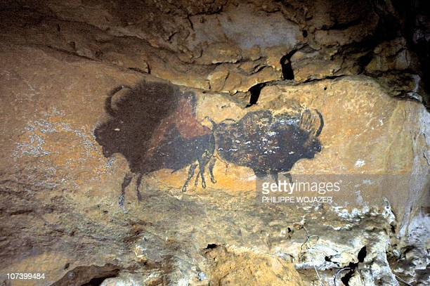 A picture taken on September 16 2010 shows prehistoric painting in the Lascaux Cave near the village of Montignac southwestern France as part of the...