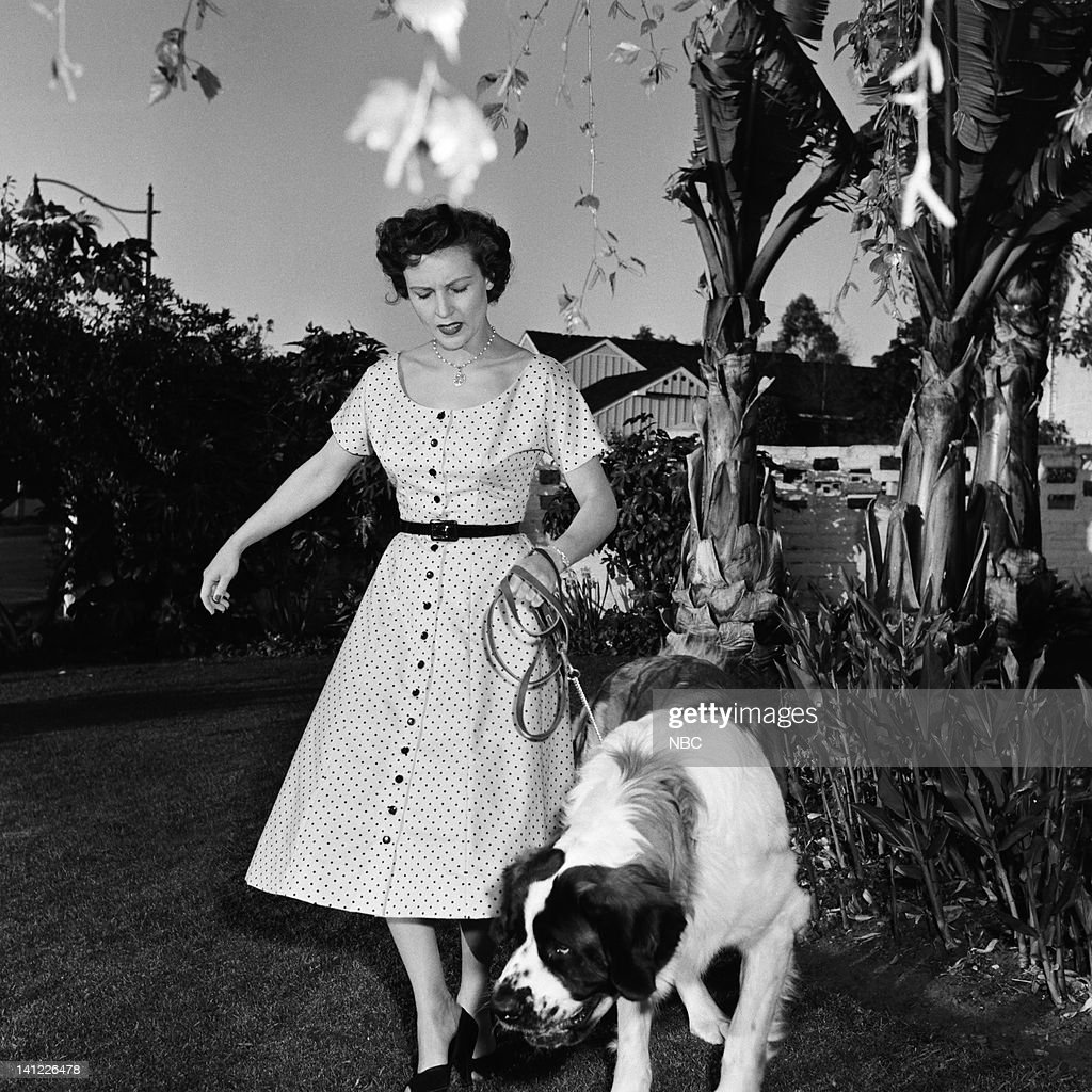 Actress <a gi-track='captionPersonalityLinkClicked' href=/galleries/search?phrase=Betty+White&family=editorial&specificpeople=213602 ng-click='$event.stopPropagation()'>Betty White</a>, dog Stormy at home in 1954 -- Photo by: Elmer Holloway/NBC/NBCU Photo Bank