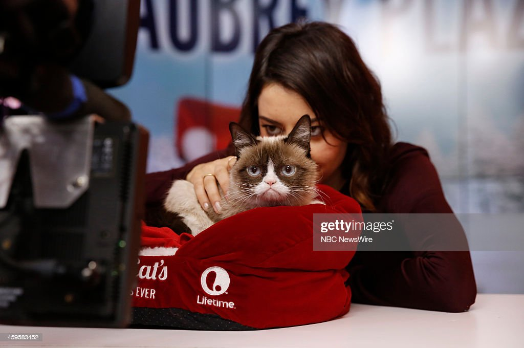 <a gi-track='captionPersonalityLinkClicked' href=/galleries/search?phrase=Aubrey+Plaza&family=editorial&specificpeople=5299268 ng-click='$event.stopPropagation()'>Aubrey Plaza</a> and Grumpy Cat appear on NBC News' 'Today' show --