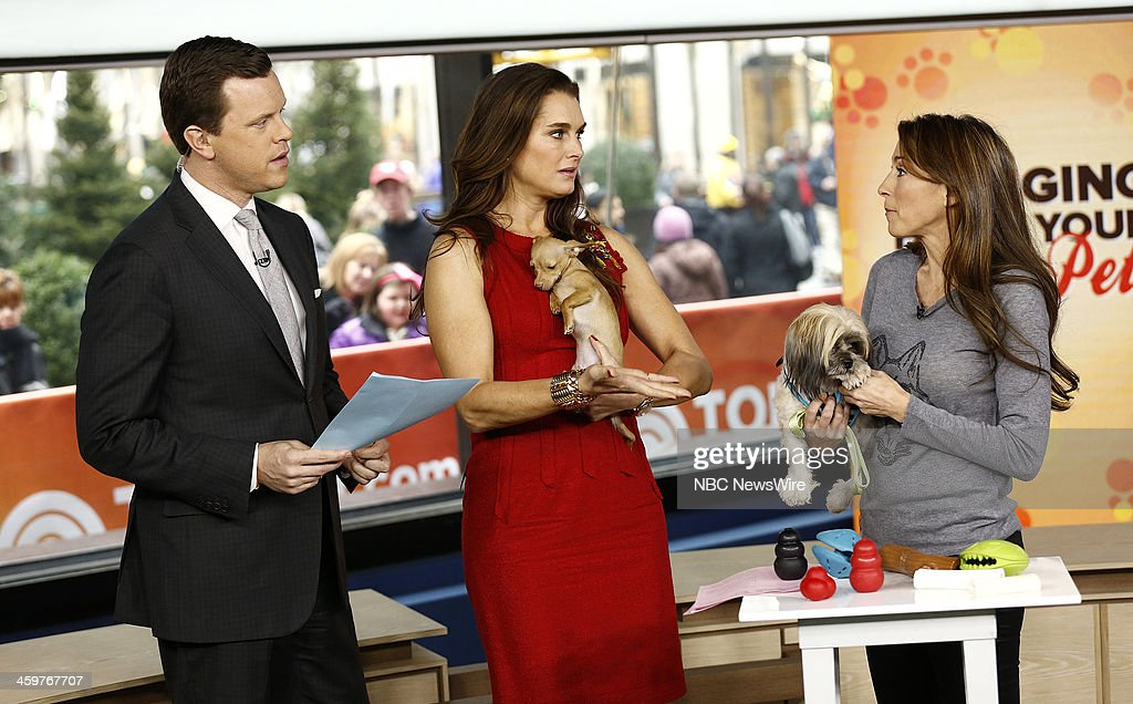 Brooke Shields, Willie Geist and Jessica Hartshorn appear on NBC News' 'Today' show --