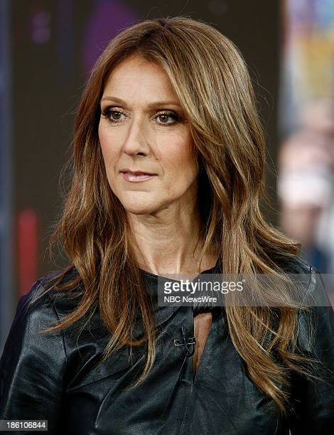 Celine Dion appears on NBC News' 'Today' show