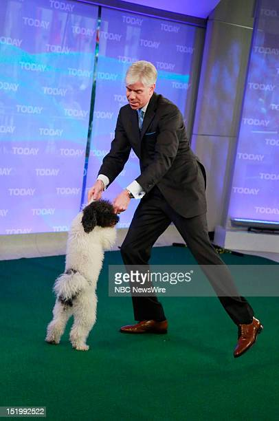 David Gregory with a member of Olate Dogs appears on NBC News' 'Today' show