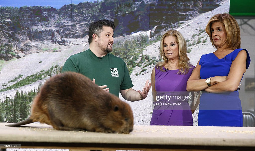 David Mizejewski, Kathie Lee Gifford and Hoda Kotb appear on NBC News' 'Today' show --
