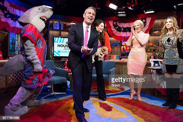 Gay Shark Andy Cohen Lisa Vanderpump Dorinda Medley and Siggy Flicker