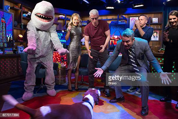 Gay Shark Kelly Ripa Anderson Cooper and Andy Cohen