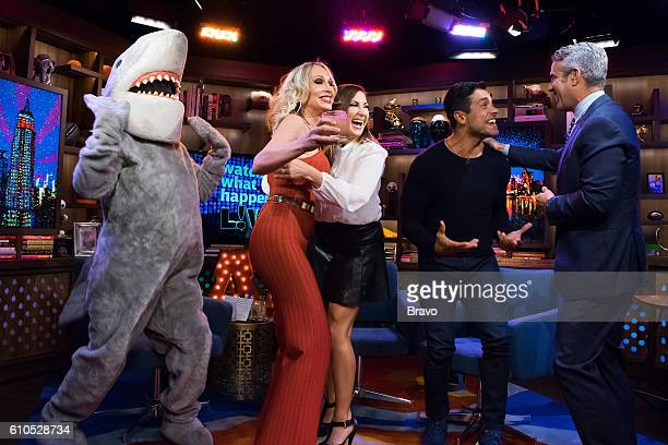 Gay Shark Kim DePaola Jacqueline Laurita Mark Consuelos and Andy Cohen