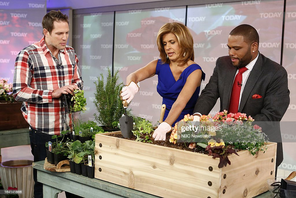HGTV's Chris Lambton, Hoda Kotb and Anthony Anderson appear on NBC News' 'Today' show on March 20, 2013 --