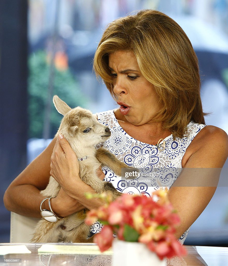 <a gi-track='captionPersonalityLinkClicked' href=/galleries/search?phrase=Hoda+Kotb&family=editorial&specificpeople=2338013 ng-click='$event.stopPropagation()'>Hoda Kotb</a> appears on NBC News' 'Today' show on May 10, 2013 --