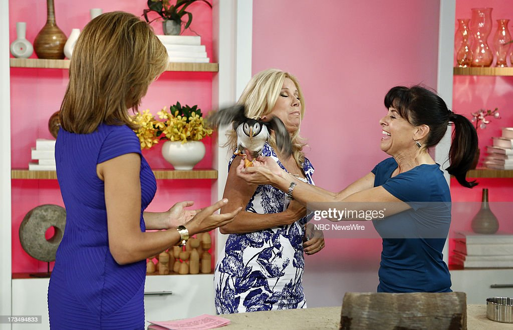 Hoda Kotb, Kathie Lee Gifford and Julie Scardina appear on NBC News' 'Today' show --