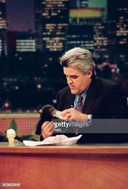 Host Jay Leno feeding a cub on February 26 1999