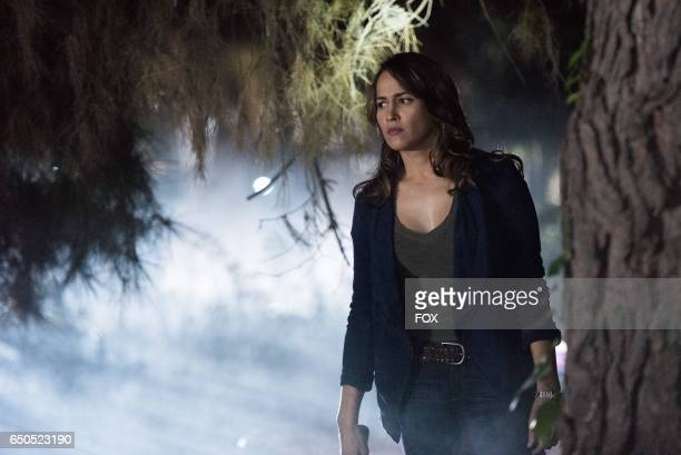 Pictured Jaina Lee Ortiz in the 'Puffer Fish Personal History' episode of ROSEWOOD airing Friday Jan 27 on FOX