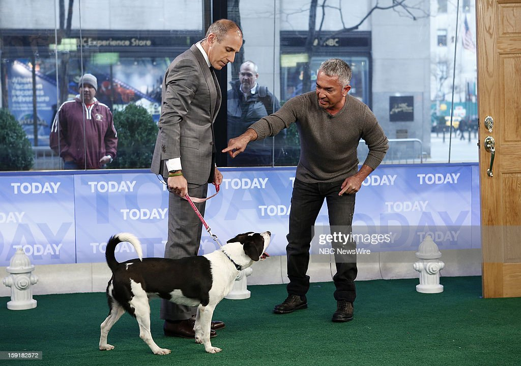 Matt Lauer and Cesar Millan appear on NBC News' 'Today' show --