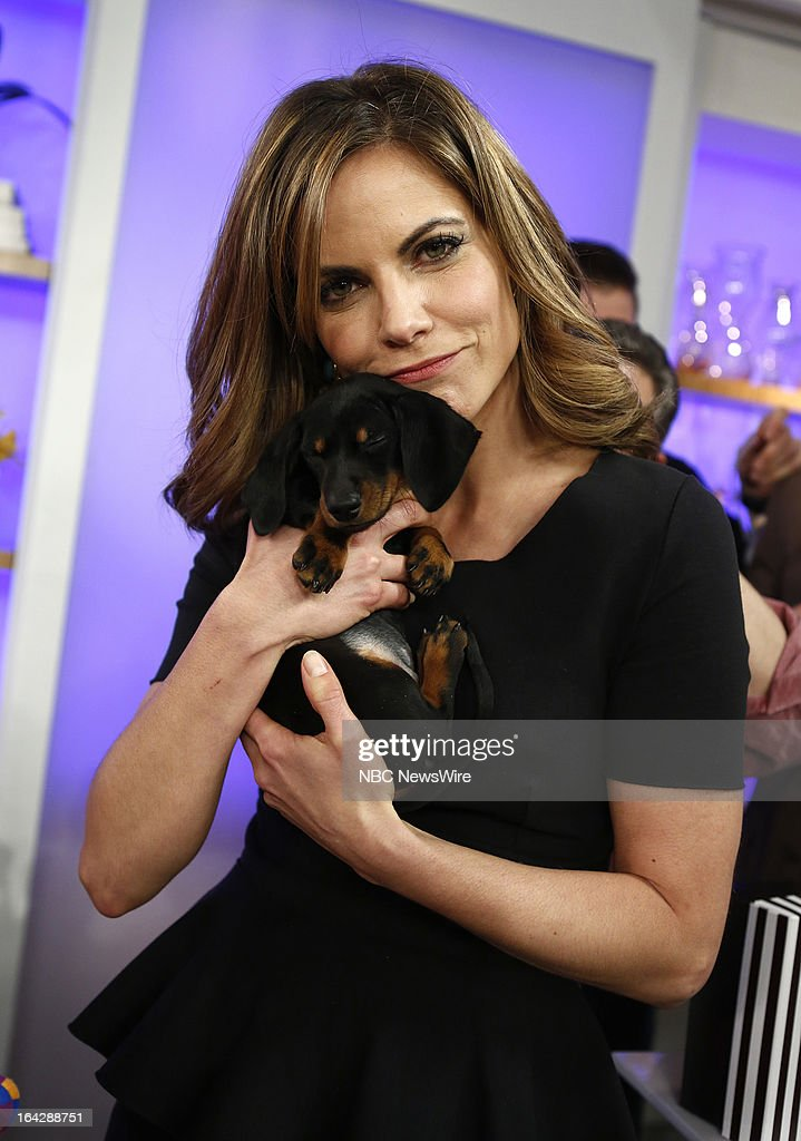 Natalie Morales appears on NBC News' 'Today' show on March 22, 2013 on March 22, 2013 --