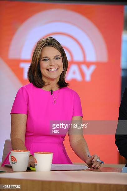 Savannah Guthrie appears on the 'Today' show on Monday November 2014