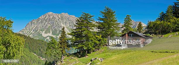Picturesque Alpine chalet summer mountain meadow panorama