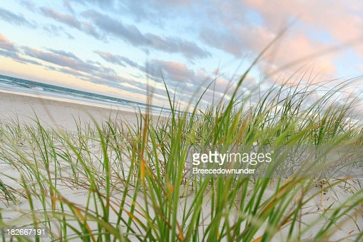 Picturesque Beach v2