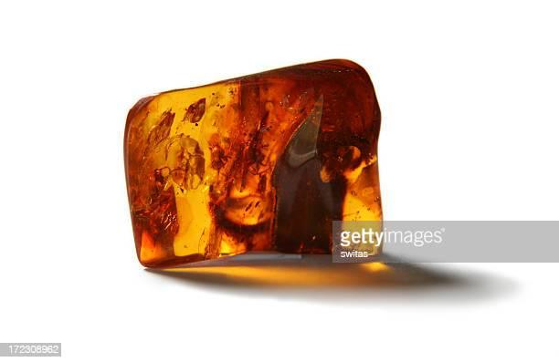 Piece of amber with insects