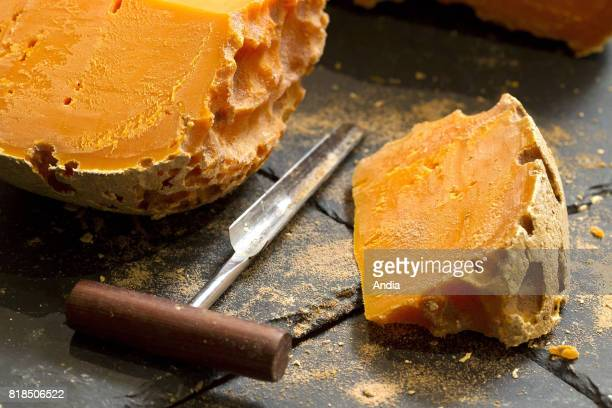 Piece of de mimolette cheese and cheese borer