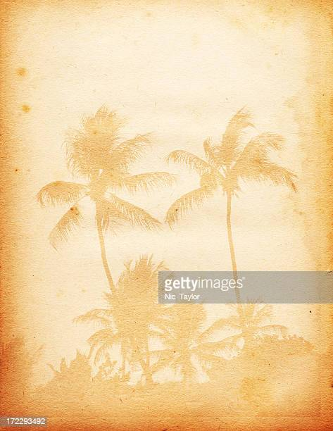 Piece of paper with faded image of palm trees