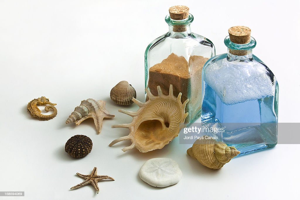 pieces of sea : Stock Photo