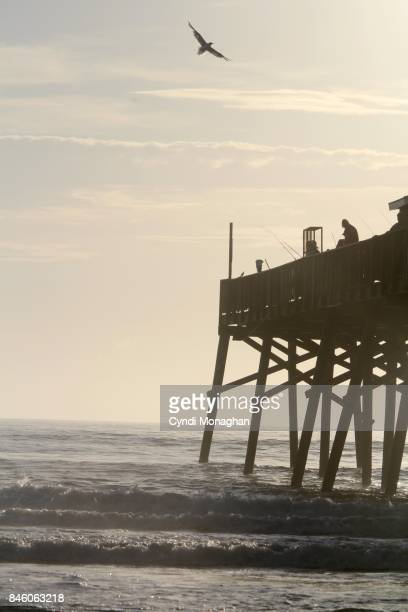 Pier Silhouetted in Morning Light