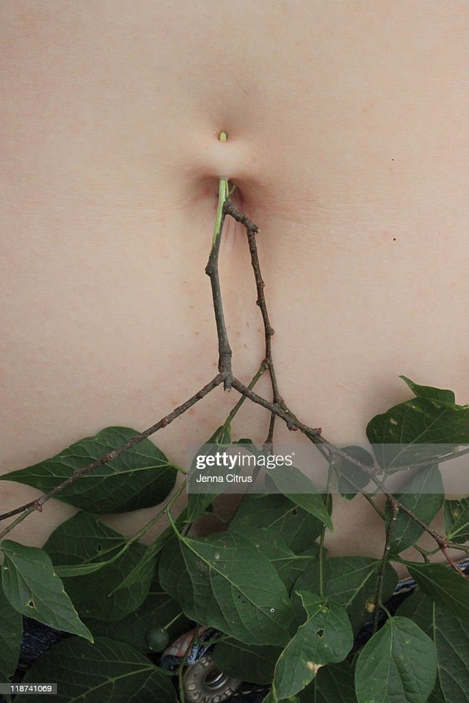 Pierced belly : Stock Photo