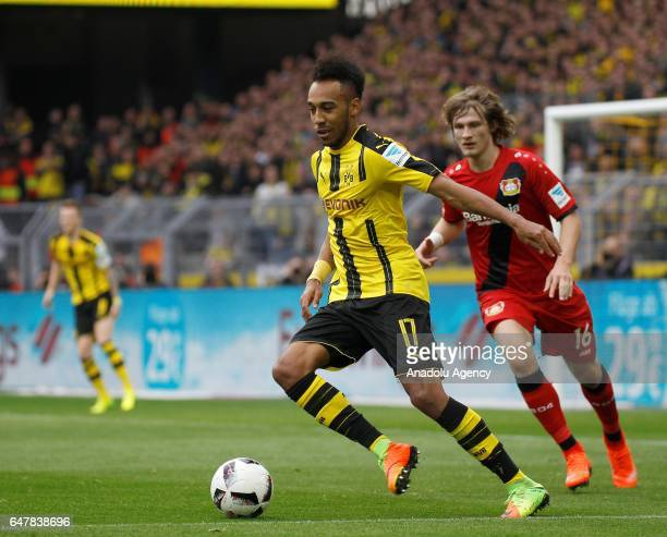 Pierre Emerick Aubameyang of Borussia Dortmund in action with Tin Jedvaj of Bayer 04 Leverkusen during the Bundesliga soccer match between Borussia...