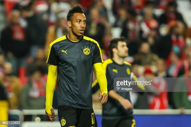 PierreEmerick Aubameyang of Borussia Dortmund looks on before the UEFA Champions League Round of 16 First Leg match between SL Benfica and Borussia...