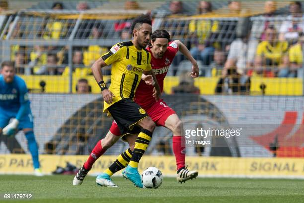 PierreEmerick Aubameyang of Dortmund and Neven Subotic battle for the ball during the Bundesliga match between Borussia Dortmund and FC Koeln at...