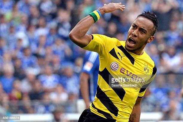 PierreEmerick Aubameyang of Dortmund celebrates his team's first goal during the Bundesliga match between FC Schalke 04 and Borussia Dortmund at...