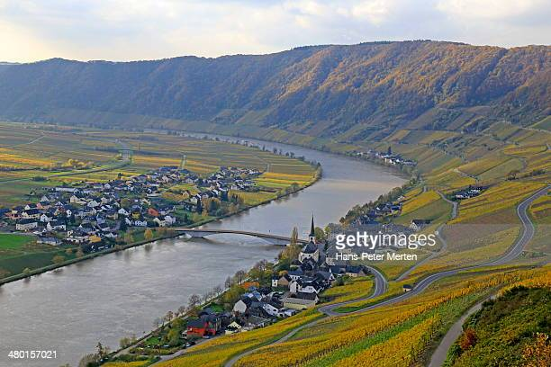 Piesport, Moselle Valley, Germany
