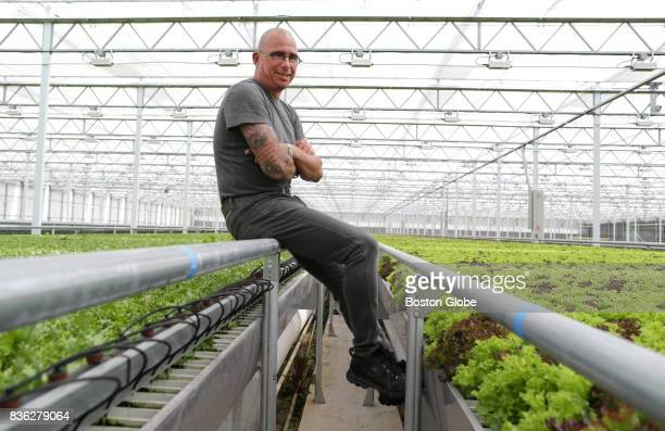 Pieter Slaman poses for a portrait in his greenhouse at Little Leaf Farms in Shirley Mass July 18 2017