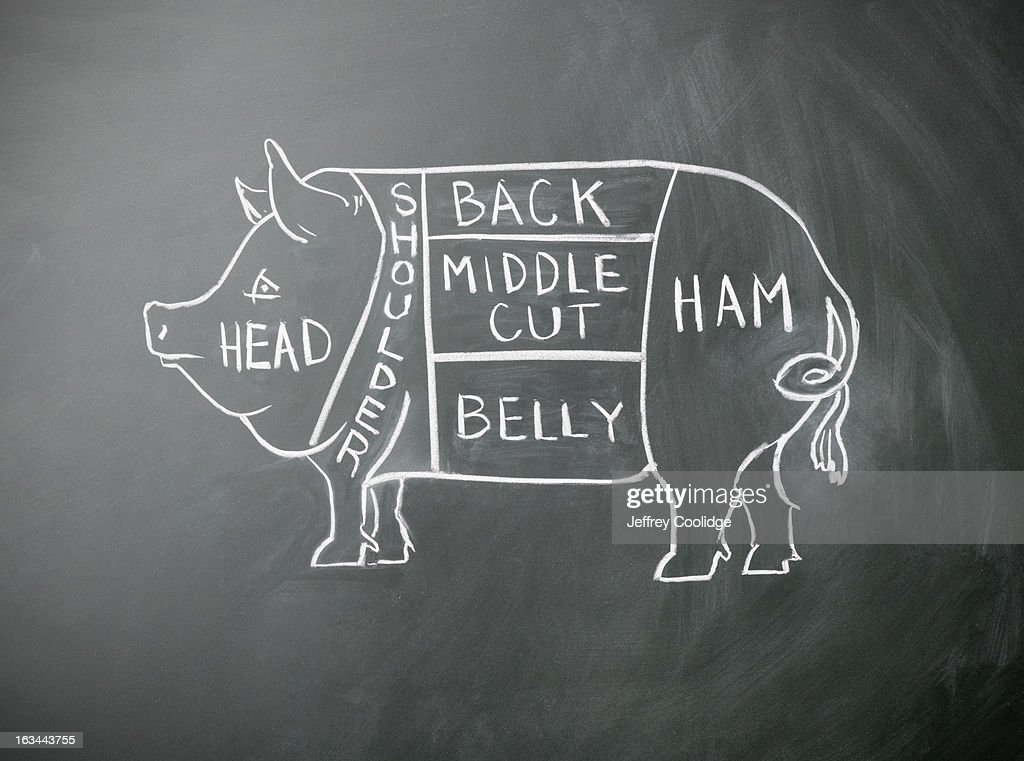 Pig Butcher Diagram : Stock Photo