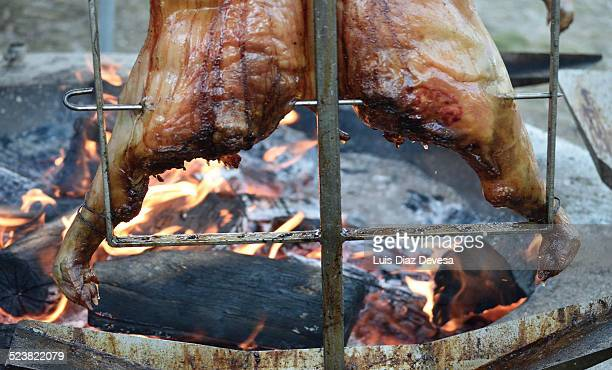 pig cooked over a wood fire