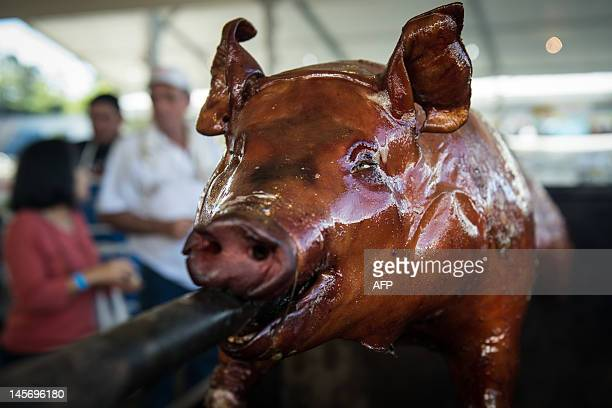 A pig is roasted during the Festa Junina in Guarulhos a suburb of Sao Paulo Brazil on June 3 2012 The traditional annual feast of Festa Junina is...