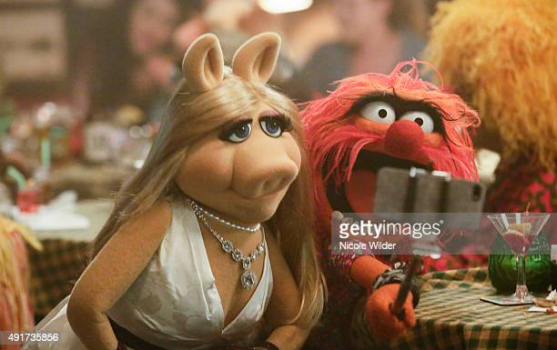 THE MUPPETS 'Pig Out' The gang has an epic night out when they run into Ed Helms at Rowlf's Tavern and they all perform their favorite karaoke jams...