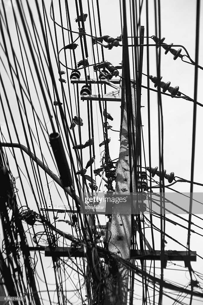 pigeon birds hanging on transmission tower and wires : Stock Photo