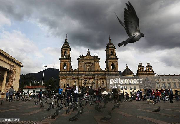 A pigeon flies in Bolivar Square after Colombia's President Juan Manuel Santos cast his ballot there in the referendum on a peace accord to end the...