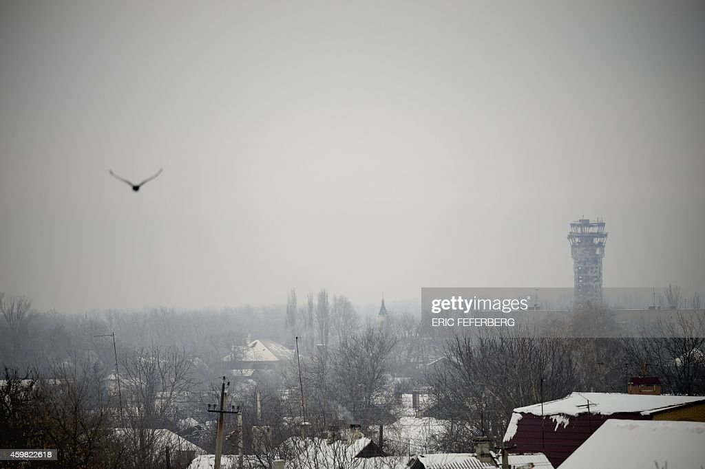 A pigeon flies near the airport of the eastern Ukrainian city of Donetsk where fightings are still reported between proRussian rebels and Ukrain army...