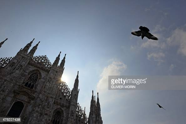 A pigeon flies near the Duomo cathedral in Milan on May 30 2015 AFP PHOTO / OLIVIER MORIN