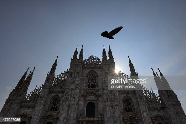 A pigeon flies near the Duomo in Milan on May 30 2015 AFP PHOTO / OLIVIER MORIN