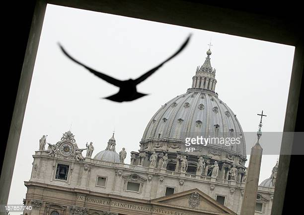 A pigeon flies over StPeter's square 25 February 2005 at the Vatican For the first time in his 26year pontificate Pope John Paul II will leave an...
