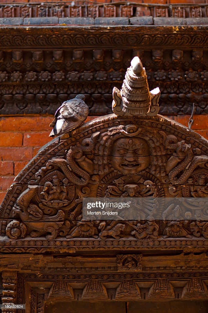 Pigeon on doorway with wood carvings : Stock Photo